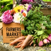 A Market ~ Photo by Shelley Paul on Unsplash